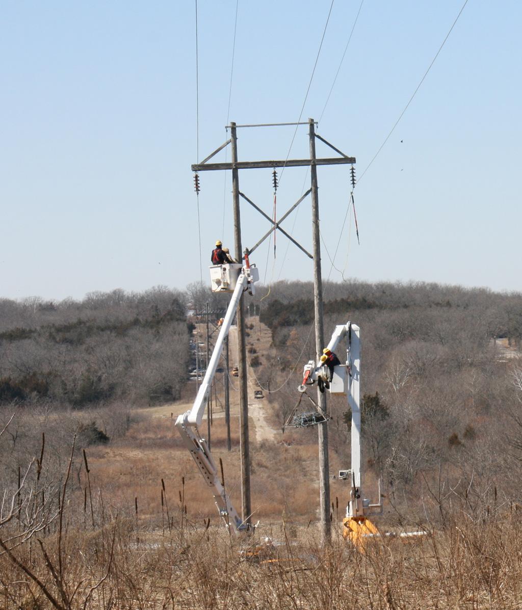 Removal of the osprey nest.